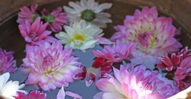 JohnEden-com_FlowerBlessingBowl